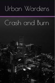 Urban Wardens Crash and Burn cover